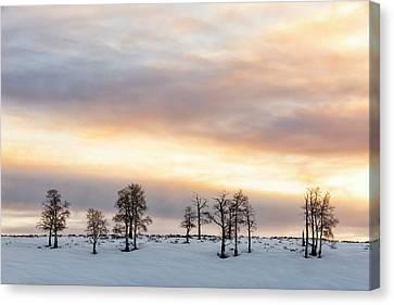 Aspen Hill At Sunset Canvas Print