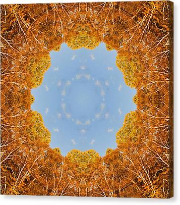 Canvas Print featuring the photograph Aspen Kaleidoscope by Bill Barber