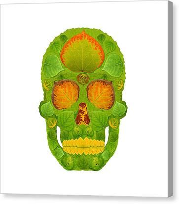 Aspen Leaf Skull 10 Canvas Print by Agustin Goba