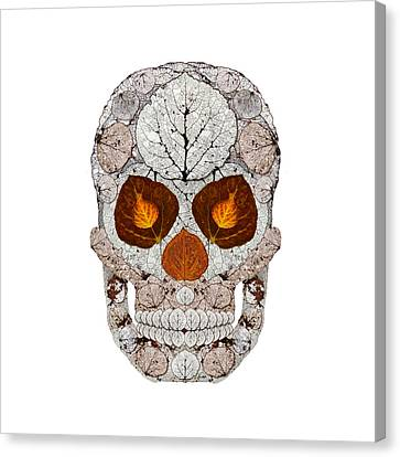 Aspen Leaf Skull 11 Canvas Print by Agustin Goba