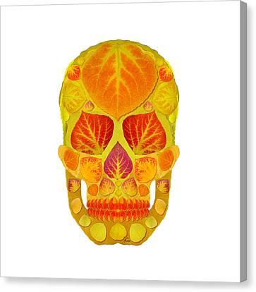 Aspen Leaf Skull 13 Canvas Print by Agustin Goba