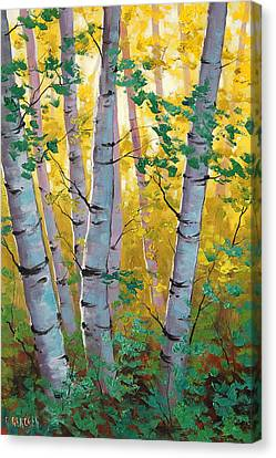 Aspen Light Canvas Print by Graham Gercken