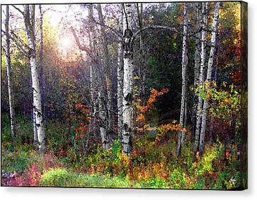 Canvas Print featuring the photograph Aspen Morning by Wayne King
