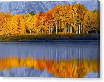 Aspen Reflection Canvas Print
