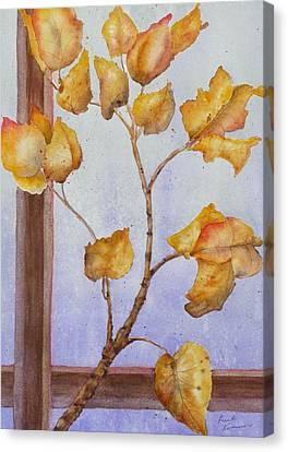 Aspen  Canvas Print by Ruth Kamenev