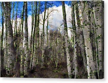 Jeff Kolker Canvas Print - Aspen Standing by Jeffrey Kolker