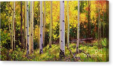 Aspen Symphony Canvas Print by Gary Kim