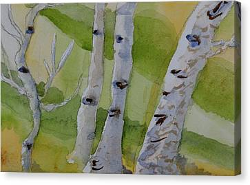 Canvas Print featuring the painting Aspen Trunks by Beverley Harper Tinsley