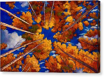 Aspen Vortex Canvas Print by Johnathan Harris
