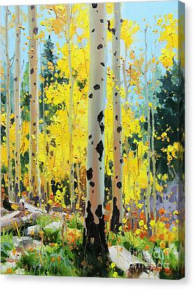 Aspens In Golden Light Canvas Print by Gary Kim