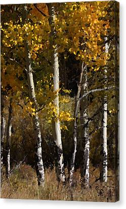 Canvas Print featuring the photograph Aspens Palate Knife by Judy Deist