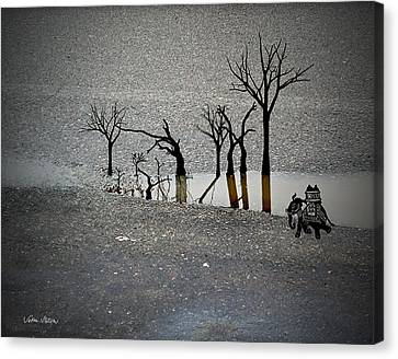 Asphalt Oasis Canvas Print