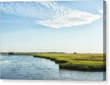 Assateague Island Canvas Print