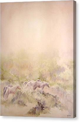 Assateague Ponies Canvas Print by Barbara Widmann