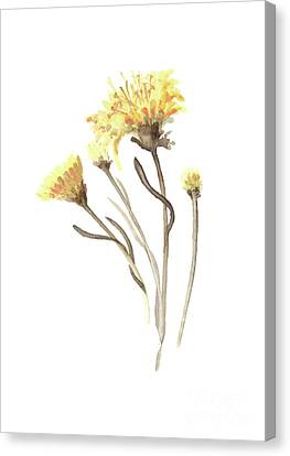 Aster Yellow Flower Abstract Art Print, Asters Watercolor Painting, Floral Minimalist Wall Decor Canvas Print by Joanna Szmerdt