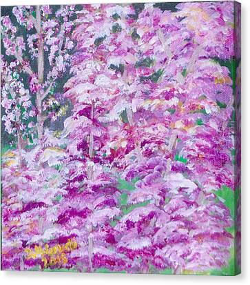 Astilbes Canvas Print
