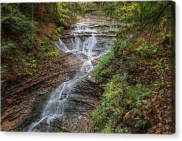 Canvas Print featuring the photograph At Bridal Veil Falls by Dale Kincaid