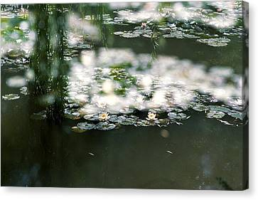 Canvas Print featuring the photograph At Claude Monet's Water Garden 5 by Dubi Roman