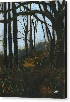 At Home With The Trees Canvas Print by Jaime Haney
