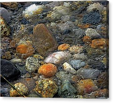 Canvas Print - At Rest Within The Streaming Tide by Lynda Lehmann