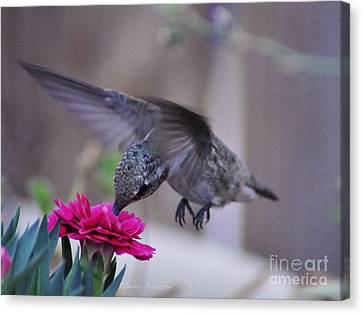 At The Carnation Canvas Print