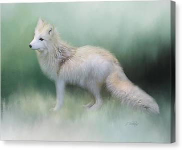 The Nature Center Canvas Print - At The Centre - Arctic Fox Art by Jordan Blackstone