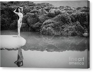 At The Edge Canvas Print by Inge Johnsson