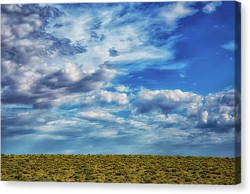 Terra Firma Canvas Print - At The Edge Of Terra Firma by Darby Donaho
