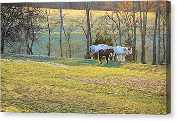At The End Of The Day Canvas Print by Jan Amiss Photography