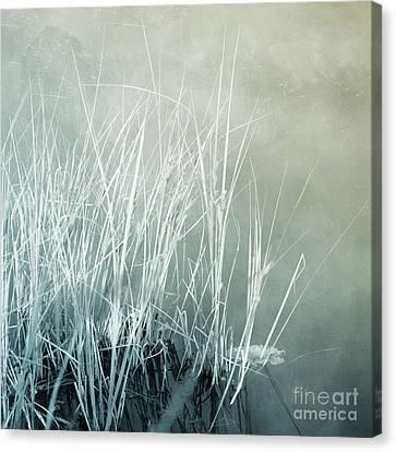 At The Lake 2 Canvas Print by Priska Wettstein