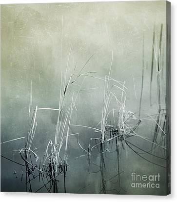 At The Lake 3 Canvas Print by Priska Wettstein