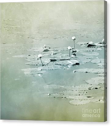 At The Lake 4 Canvas Print by Priska Wettstein