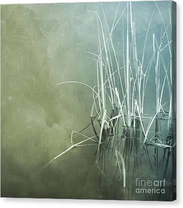 At The Lake 5 Canvas Print by Priska Wettstein