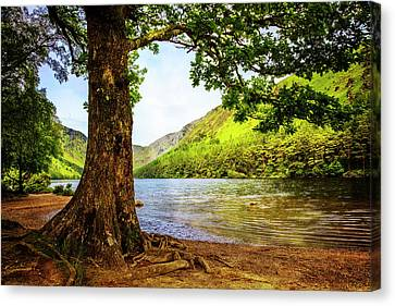 At The Lake Of Glendalough Canvas Print by Debra and Dave Vanderlaan