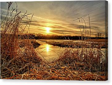 At The Rivers Edge Canvas Print by Bonfire Photography