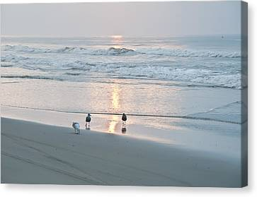 At The Start Of The Day Canvas Print by Bill Cannon