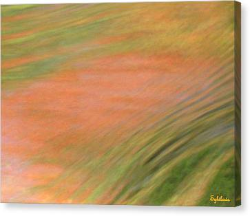 At The Subtle Feeling Level Canvas Print