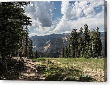 At The Top Of The Run Canvas Print