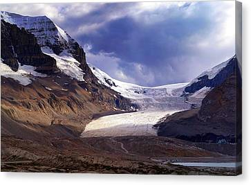 Athabasca Glacier Canvas Print by Heather Vopni