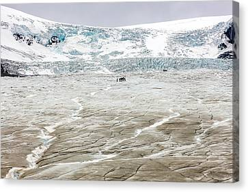 Canvas Print featuring the photograph Athabasca Glacier With Guided Expedition by Pierre Leclerc Photography