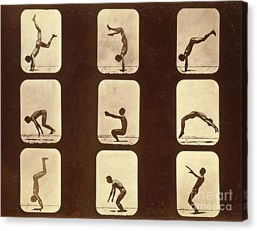 Athletes Canvas Print by Eadweard Muybridge