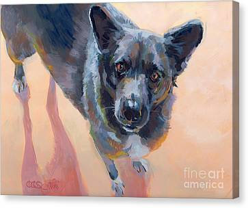 Cattle Dog Canvas Print - Atira by Kimberly Santini