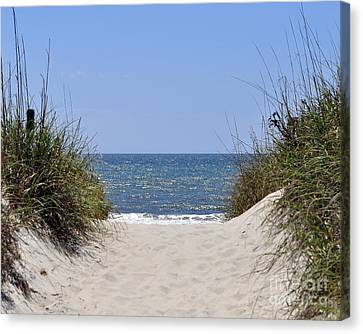 Atlantic Access Canvas Print by Al Powell Photography USA