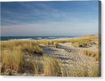 Atlantic Coast And Cap Ferret Canvas Print by I hope you'll like it