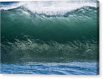 Atlantic Curl Canvas Print