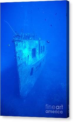 Atlantis Wreck Canvas Print by Bob Abraham - Printscapes