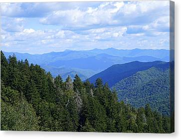 Atop The Cherohala Canvas Print by Laurie Perry