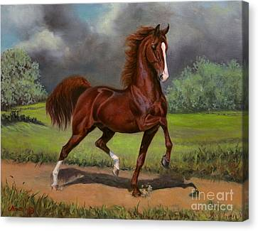 Attache's Awesome Firecracker Canvas Print by Jeanne Newton Schoborg