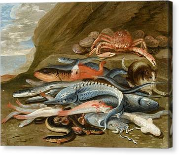 Still Life With Fish Canvas Print - attributed to Still Life with Fish by Jan van Kessel