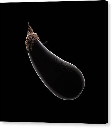 Aubergine Still Life Canvas Print